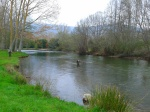 Trout fishing in the Ebro in Polientes