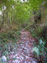 Old stone paths around Ramales de la Victoria