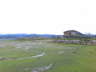 Bird Observatory, Santoña Saltmarshes