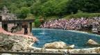 Sealion show, Cabárceno Natural Park