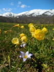 Spring in Campoo valley