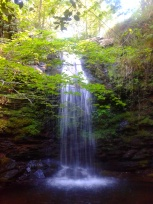 Cascadas de Lamiña, Saja