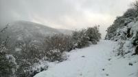 El Henar, Campoo valley