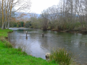 Fishing in the River Ebro, Polientes