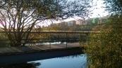 Las Llamas park