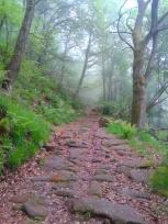 Roman road, Barcena Pie de Concha
