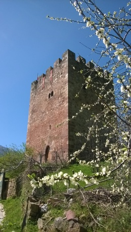 Torre de Linares, Linares
