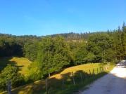 Anievas valley